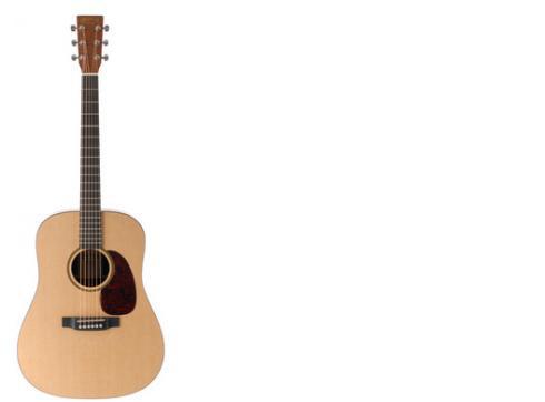 Martin Guitars DXJ