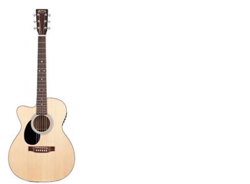 Martin Guitars OMC-1EL