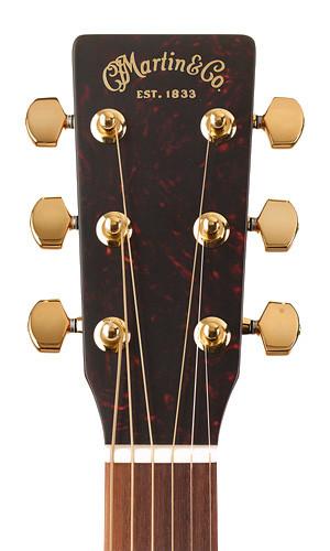 Martin Guitars SWDGT